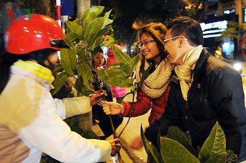 Встреча Нового года 2012 по лунному календарю в районах Вьетнама - ảnh 1