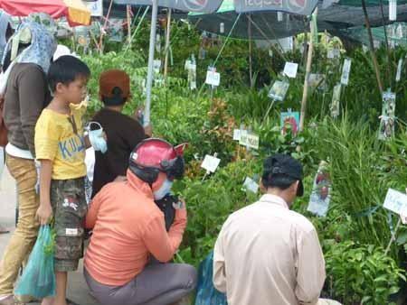 Открылась торговая и сельскохозяйственная ярмарка дельты реки Меконг – 2012 - ảnh 1