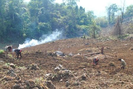 Cтроительство новой деревни в горной общине Хуойленг провинции Диенбиен - ảnh 1