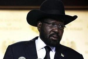 Президент Южного Судана согласен на переговоры по прекращению конфликта - ảnh 1