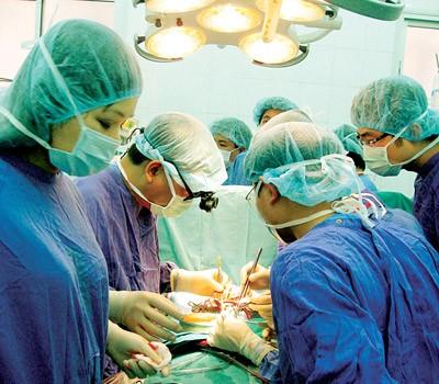 Трансплантация внутренних органов – важное достижение вьетнамской медицинской отрасли - ảnh 1