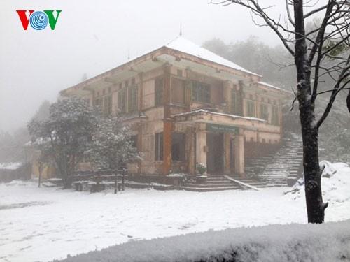Снег прошел в городе Шапа - ảnh 2