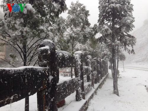 Снег прошел в городе Шапа - ảnh 3
