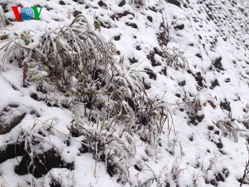 Снег прошел в городе Шапа - ảnh 5
