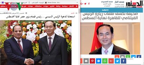 Президент Вьетнама Чан Дай Куанга дал интервью египетским СМИ - ảnh 1