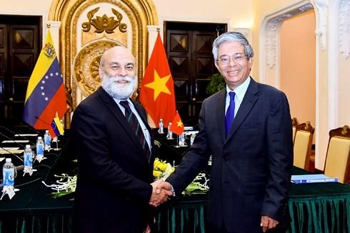 В Ханое прошла политическая консультация на уровне замминистров между Вьетнамом и Венесуэлой - ảnh 1