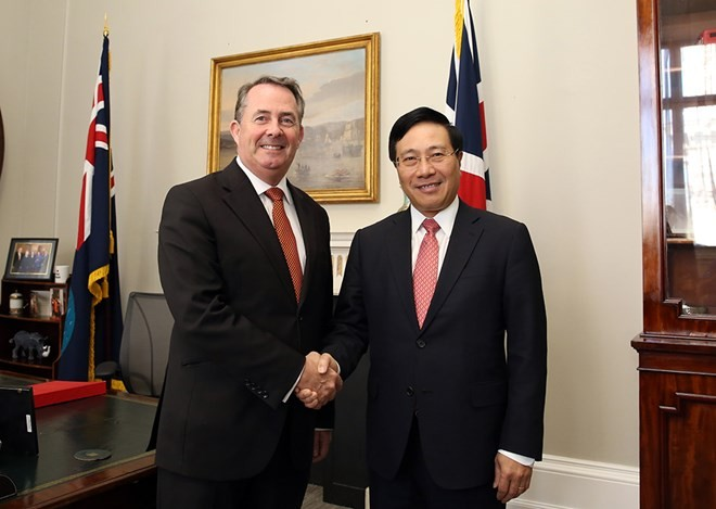 Вице-премьер, глава МИД Вьетнама посетил с официальным визитом Великобританию и Северную Ирландию - ảnh 1