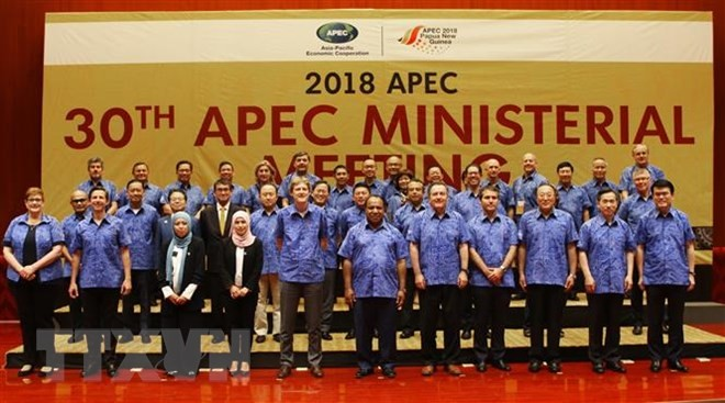 Вице-премьер, глава МИД Вьетнама принял участие в конференции министров иностранных дел и торговли стран АТЭС - ảnh 1