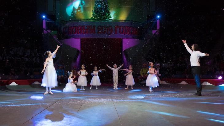 Программа «Новогодняя ёлка» в Ханое - ảnh 4