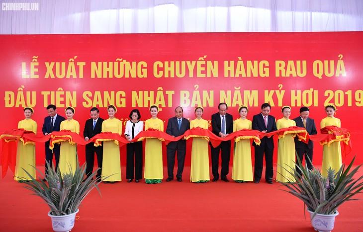 Нгуен Суан Фук посетил экспортную продуктовую компанию «Донг Жао» - ảnh 1