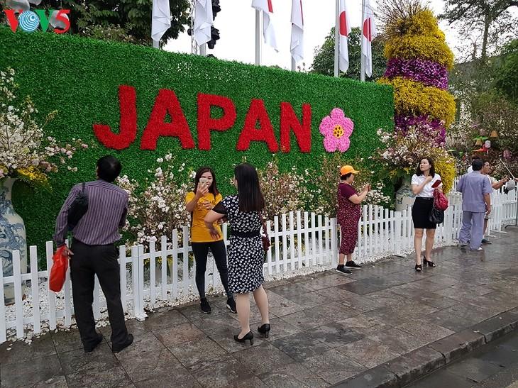 В Ханое прошёл фестиваль японской сакуры 2019 года - ảnh 1