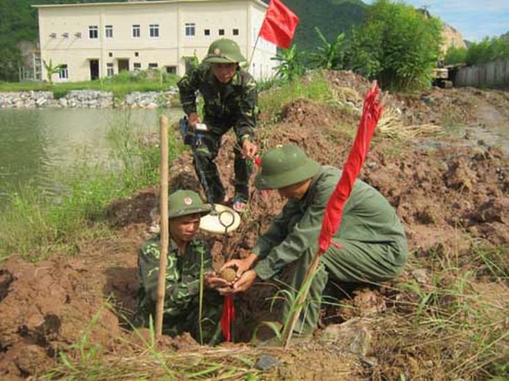Вьетнам стремится к полной ликвидации последствий применения бомб и мин - ảnh 1