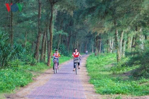 Кото - зелёные жемчужины на северо-востоке Вьетнама - ảnh 6
