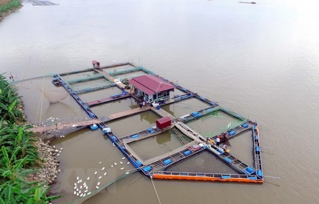 Необходимо проводить подходящую политику в области управления водными ресурсами - ảnh 1