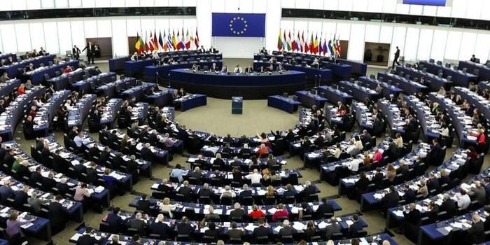 Выборы в Европарламент: существующие вызовы  - ảnh 1