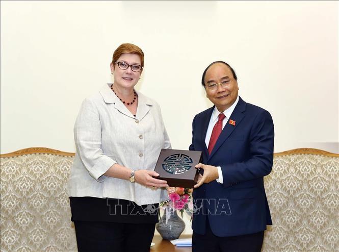 Премьер-министр Вьетнама принял главу МИД Австралии - ảnh 1
