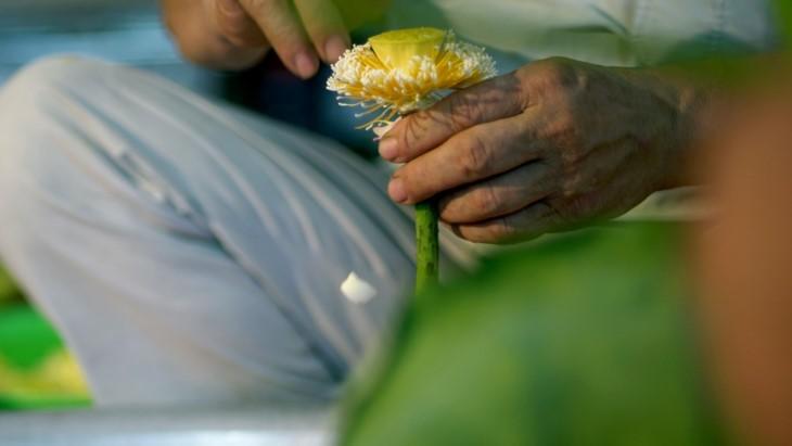 Ханойский лотосовый чай - утончённый вкус и изысканный аромат - ảnh 14