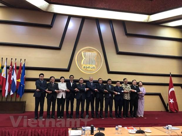 АСЕАН и Турция согласовали приоритетные направления сотрудничества - ảnh 1