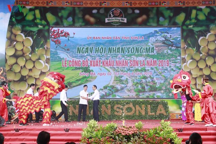 Лонганы провинции Шонла были экспортированы в США и Китай - ảnh 1