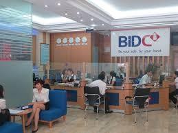 BIDV tổ chức kỷ niệm 20 năm chuyển đổi mô hình thương mại và 6 năm thành lập BIDC - ảnh 1