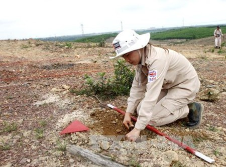 Việt Nam nỗ lực khắc phục hậu quả bom mìn - ảnh 1