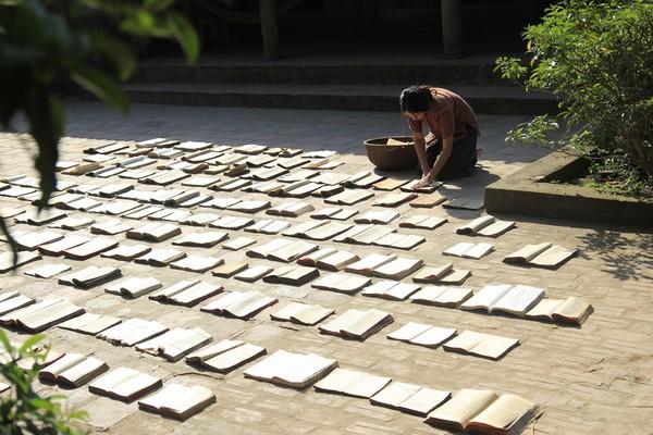Dấu ấn sáng tạo nghệ thuật ở giải Cánh diều 2015 của Hội Điện ảnh Việt Nam - ảnh 1