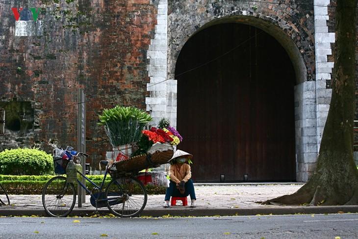 Tháng tư, hoa loa kèn về trên phố - ảnh 7