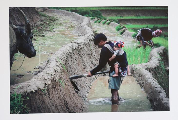 Chiêm ngưỡng khoảnh khắc tuyệt vời của những ông bố Việt Nam - ảnh 8
