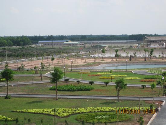 Bước phát triển nông nghiệp công nghệ cao ở thành phố Hồ Chí Minh - ảnh 2
