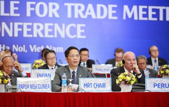 Hội nghị các Bộ trưởng phụ trách Thương mại APEC lần thứ 23 kết thúc tốt đẹp - ảnh 1