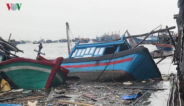 Bão Damrey gây thiệt hại nặng tại các tỉnh Nam Trung bộ  - ảnh 1