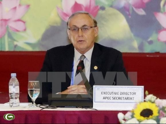 Việt Nam và các nền kinh tế thành viên APEC tháo gỡ những thách thức để tăng trưởng và liên kết - ảnh 2