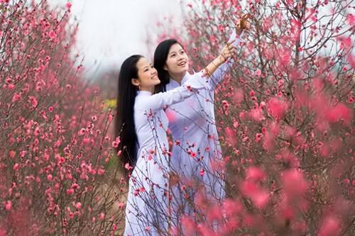 Mùa xuân trong các ca khúc Việt Nam - ảnh 1