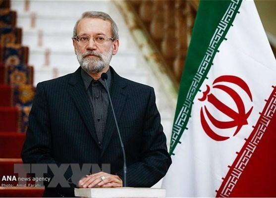 Chủ tịch Quốc hội Iran Ali Ardeshir Larijani thăm chính thức Việt Nam  - ảnh 1