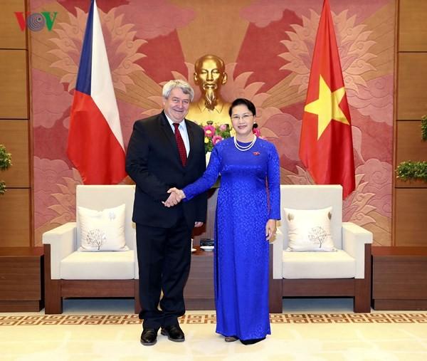 Chủ tịch Quốc hội Nguyễn Thị Kim Ngân tiếp Phó Chủ tịch Hạ viện Cộng hòa Séc - ảnh 1