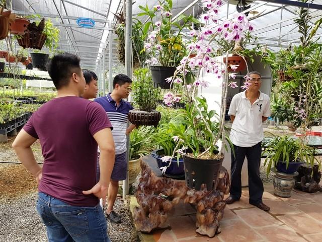 Thành lập Trung tâm Nghiên cứu bảo tồn và phát triển Hoa lan Việt Nam - ảnh 2