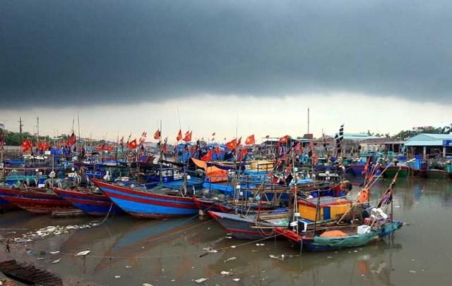Bão Bebinca có khả năng đổ bộ vào khu vực từ Quảng Ninh đến Nam Định  - ảnh 1