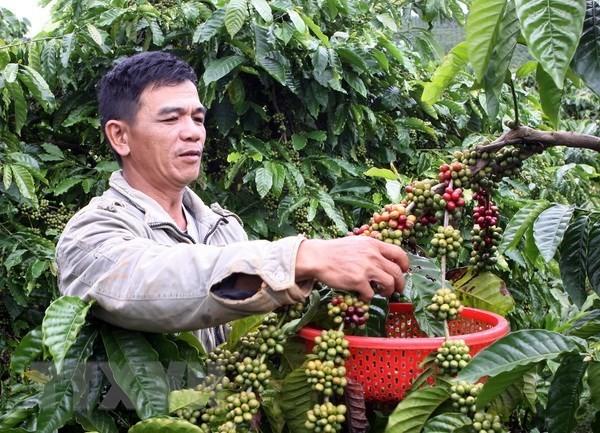 """Sắp ra mắt cuốn """"Chỉ dẫn địa lý – Di sản thiên nhiên và văn hóa Việt"""" - ảnh 1"""