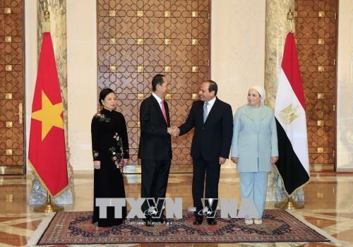Tổng thống Abdel Fattah Al Sisi chủ trì lễ đón và Hội đàm với Chủ tịch nước Trần Đại Quang - ảnh 2