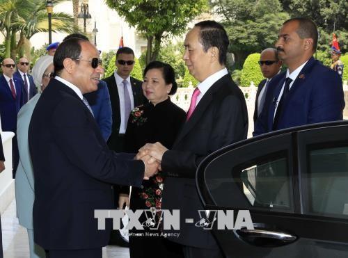 Tổng thống Abdel Fattah Al Sisi chủ trì lễ đón và Hội đàm với Chủ tịch nước Trần Đại Quang - ảnh 1