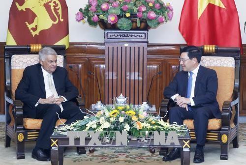 Phó Thủ tướng, Bộ trưởng Ngoại giao Phạm Bình Minh hội kiến với Thủ tướng Srilanka - ảnh 1
