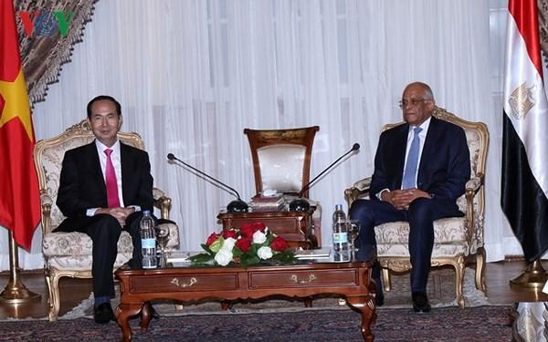 Chủ tịch nước Trần Đại Quang hội kiến với Chủ tịch Quốc hội Ai Cập - ảnh 1