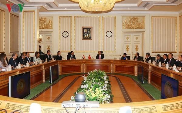 Chủ tịch nước Trần Đại Quang hội kiến với Thủ tướng Ai Cập - ảnh 1