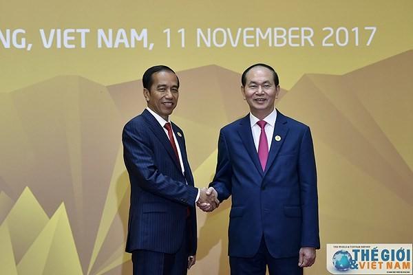 Tổng thống Cộng hòa Indonesia và Phu nhân bắt đầu thăm cấp Nhà nước Việt Nam - ảnh 1