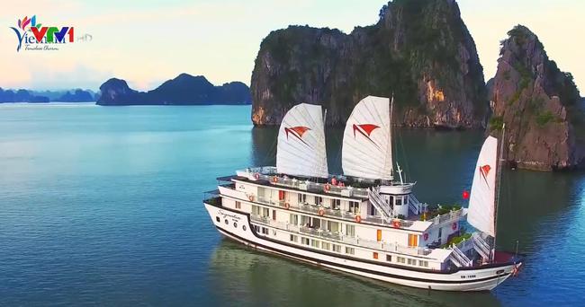 Việt Nam đẩy mạnh quảng bá du lịch tại Canada - ảnh 1