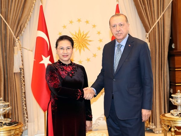 Chủ tịch Quốc hội Nguyễn Thị Kim Ngân tiếp kiến Tổng thống Thổ Nhĩ Kỳ - ảnh 1