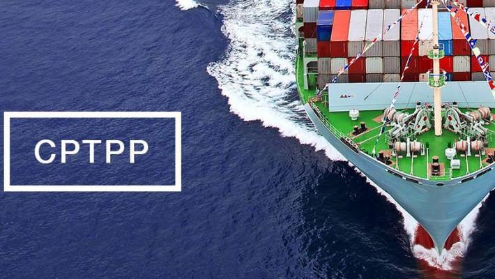 CPTPP – Cơ hội và thách thức cho sự phát triển của Việt Nam - ảnh 2