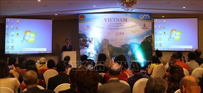 Roadshow quảng bá du lịch Việt Nam tại Ấn Độ  - ảnh 1