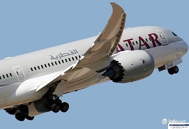 Sắp có thêm 04 chuyến bay hàng tuần từ Paris tới Đà Nẵng - ảnh 1