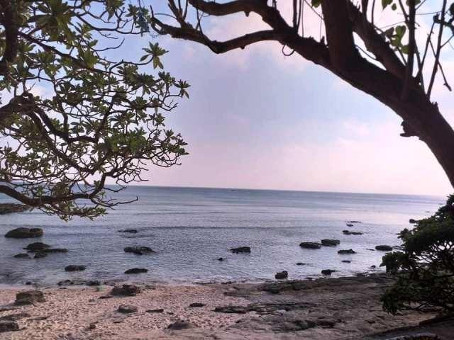 Chung tay bảo tồn môi trường sinh thái vùng biển Lý Sơn - ảnh 2
